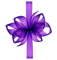 purple transparent bow and ribbon on background vector image
