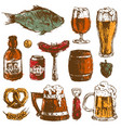 beer food hand drawn sketch set mug bottle vector image