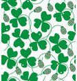 clover flowers and leaves vector image