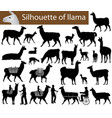 collection silhouettes llamas and its cubs vector image vector image