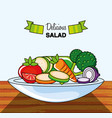 dish with delicious salad vector image