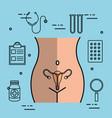 female reproductive system uterus gynecology vector image