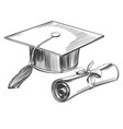 graduate cap and diploma education vintage set vector image