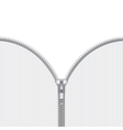 Realistic open zipper template vector image