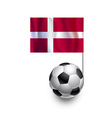 Soccer Balls or Footballs with flag of Denmark vector image vector image