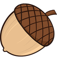 Cartoon acorn