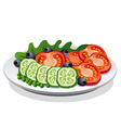 fresh salad vector image vector image