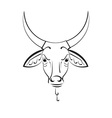 head of the Indian sacred cow zebu vector image vector image