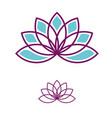 lotus flower logo template vector image