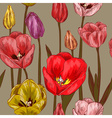 Seamless Floral Pattern with Tulips vector image vector image