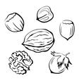 Nuts Black Pictograms vector image