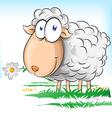 sheep cartoon on background vector image
