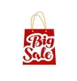 Big Sale logo Shopping symbol or icon vector image vector image