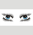 blue woman looking eyes icon on white background vector image vector image