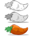 cartoon orange big carrot set vector image vector image