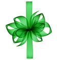 green emerald transparent bow and ribbon top view vector image vector image
