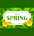 hello spring background with flower vector image vector image