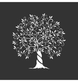 Olive tree silhouette icon isolated on dark vector image vector image