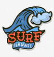 surfing surf themed hawaii hand drawn traditional vector image vector image