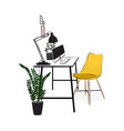 office workplace with computer and plants vector image