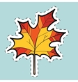 Autumn maple leaf nature seasons label sticker vector image