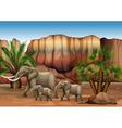 Elephants at the desert vector image