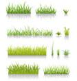 green grass set vector image vector image