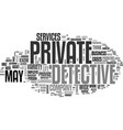 what services can a private detective provide vector image vector image