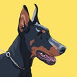 dog Doberman Pinscher vector image vector image