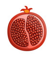 half of pomegranate icon cartoon style vector image