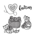 knitting theme card with cute cat and lettering vector image