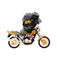 motorcycle motobike on fire isolated object vector image