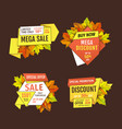 sale super quality special offer 50 percent off vector image vector image