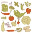 Set of health food vector | Price: 1 Credit (USD $1)
