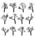 trees silhouettes isolated on white background vector image vector image