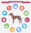 Dog infographics and icon set vector image