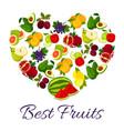 fresh juicy fruits in heart symbol vector image