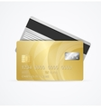 Golden Card Two Side vector image vector image