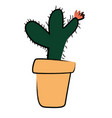 hand drawn kids cactus vector image vector image