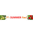 summer web banner vector image vector image