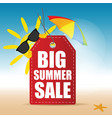 tag summer sale with sun and sea star vector image vector image