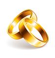 wedding rings vector image vector image