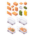 isometric set airport luggage trolley for parcels vector image