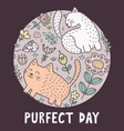 purfect day print with cute cats funny card vector image vector image