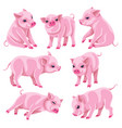 set of pink micro pigs in moving vector image