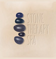 stone therapy spa logo