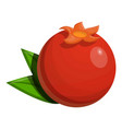 whole pomegranate icon cartoon style vector image