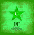 14 august pakistan independence day celebration