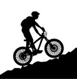 a bicycle riding bike vector image