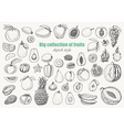 Big collection of fruits on white background vector image